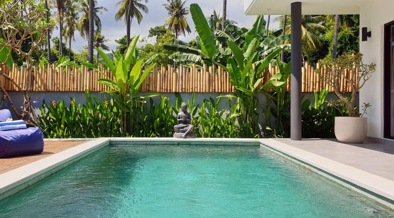 bali-lovina-villa-for-sale-pool