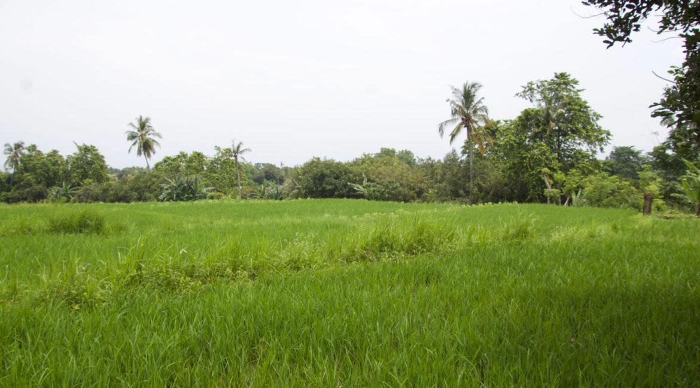 bali-ocean-view-land-1