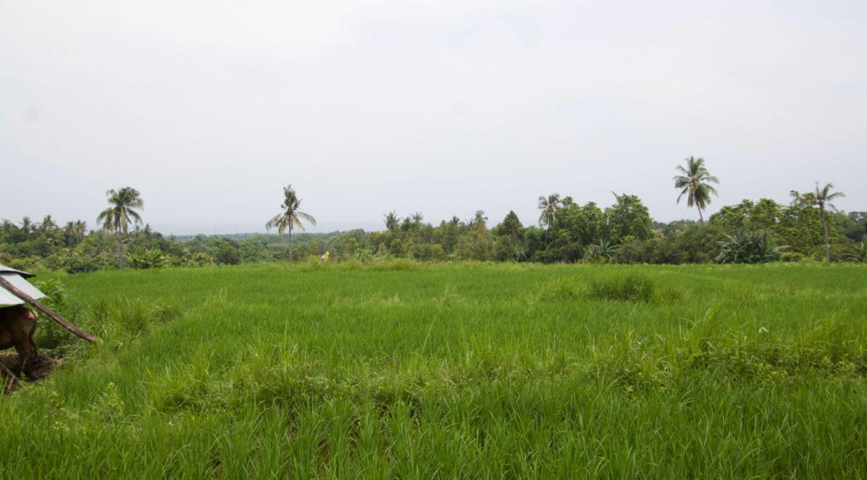 bali-ocean-view-land-2