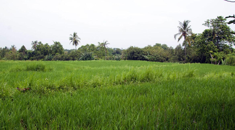 bali-ocean-view-land-6