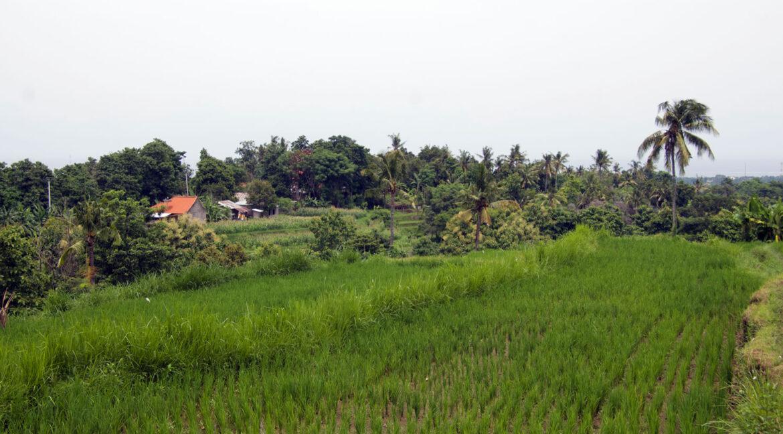 bali-ocean-view-land-7