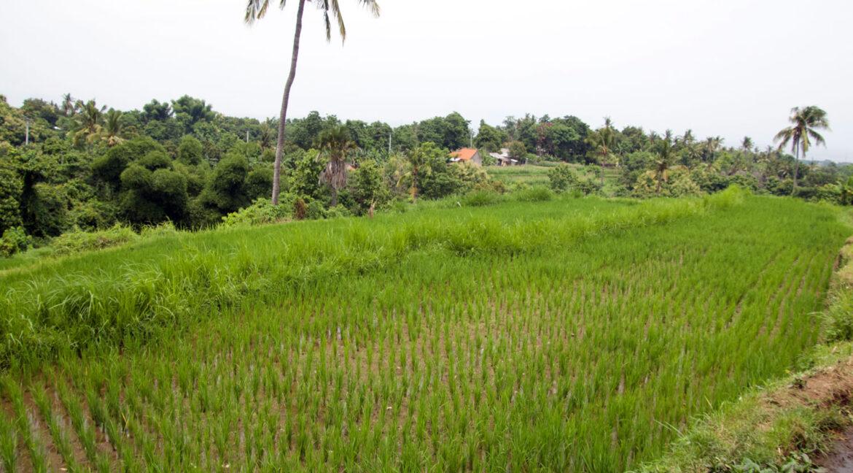 bali-ocean-view-land-building