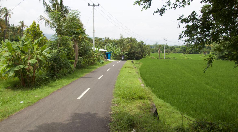bali-ocean-view-land-road