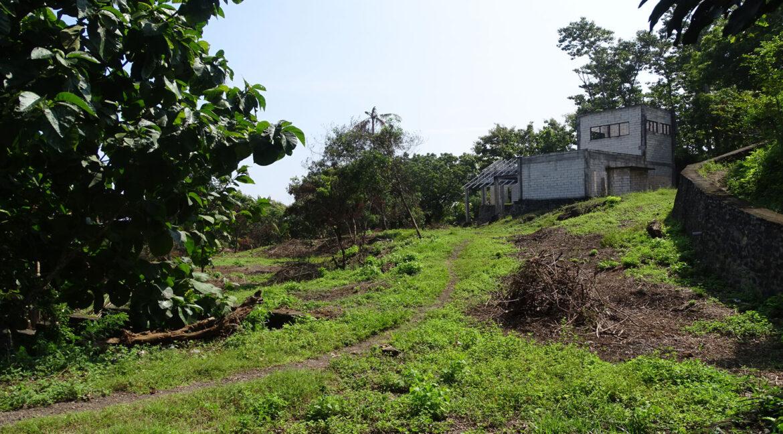 lovina-sea-view-hillside-land-10