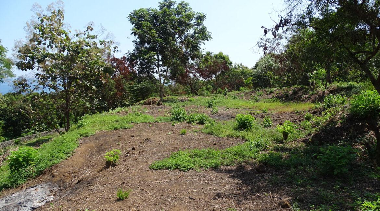 north-bali-hillside-sea-view-land-sale-9