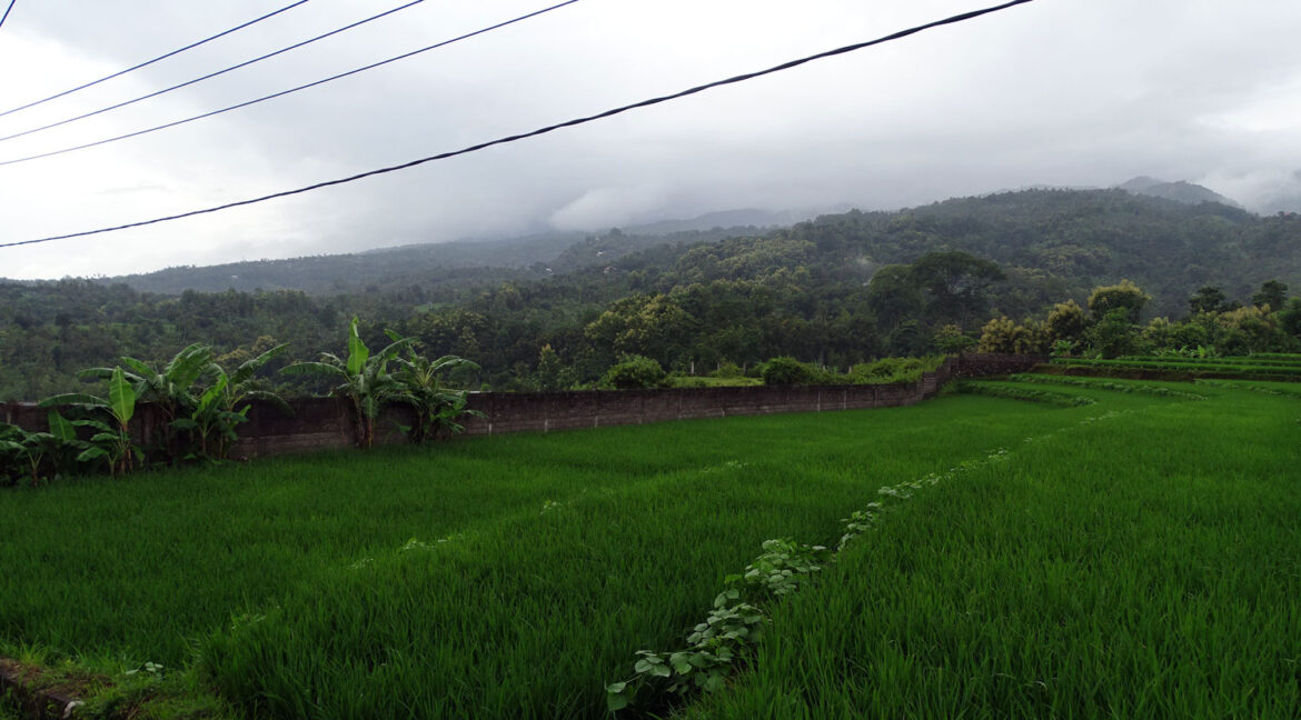 north-bali-land-with-view-7