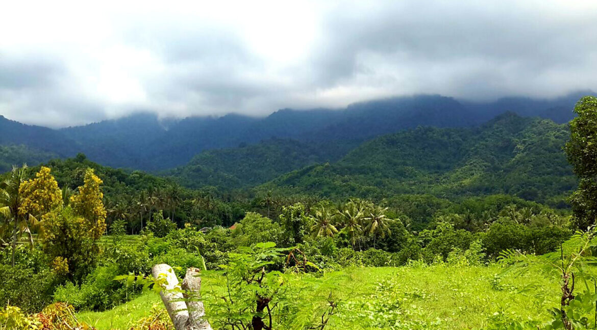 north-west-bali-land-for-sale-16