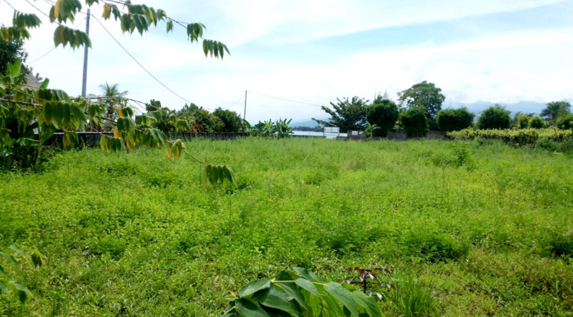 north-west-bali-land-for-sale-2