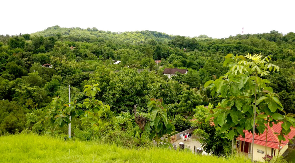 north-west-bali-land-for-sale-8