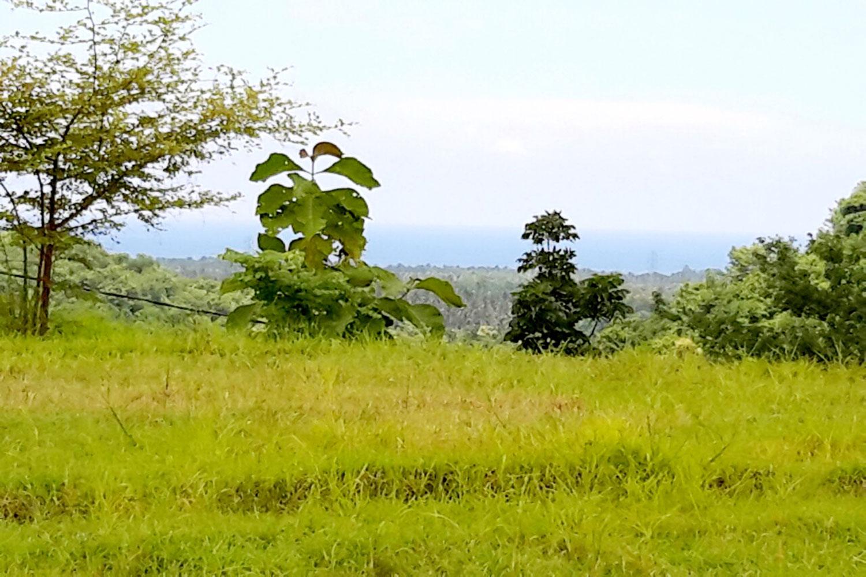 North Bali sea view land – for sale